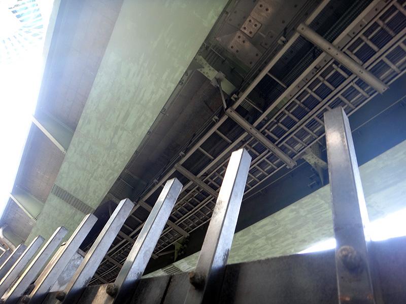 大阪 橋の下